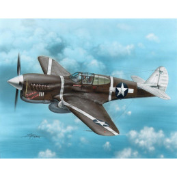 Special Hobby  1/72   P-40F...