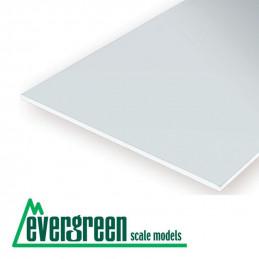 Evergreen Hoja Clear...