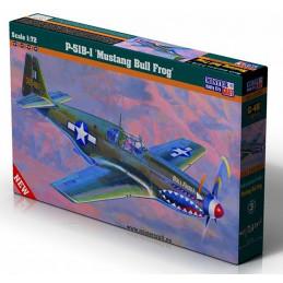 Mister Craft  1/72  P-51B-1...