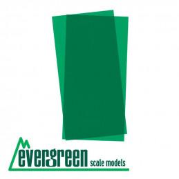 Evergreen Hojas color Verde...