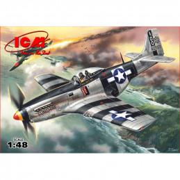 ICM  1/48  Mustang P-51K