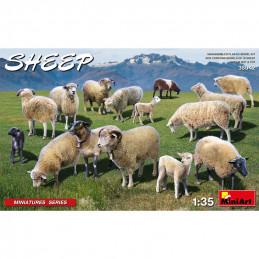 MiniArt  1/35   Sheep
